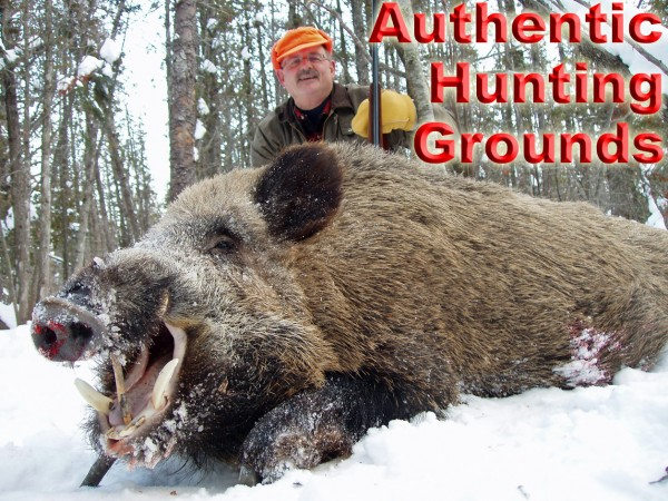 Russian Boar Hunting – Experience the Snow Hunts