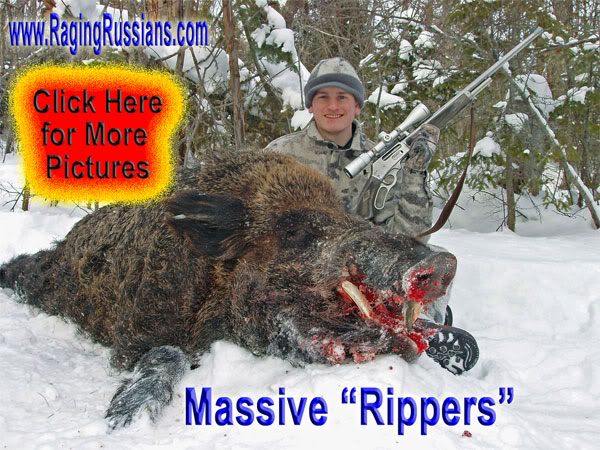 Authentic Boar Hunt: Dangerous Game Hunting Adventures